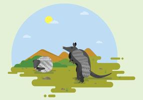 Free Armadillo On Yard Illustration