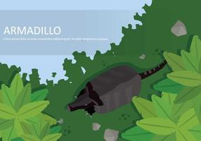 Free Armadillo From Top View Illustration