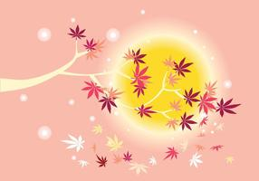 Smooth Japanese Maple Plant with Sun Background and Fall Maple Leaves