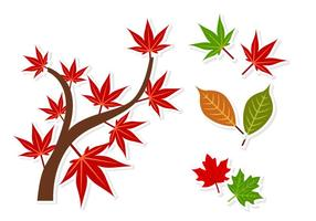 Japanese Maple Sticker Vectors