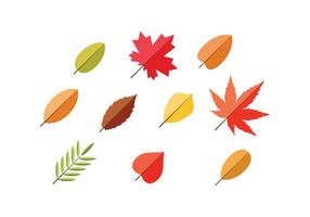 Free Leaf Flat Icon Vector