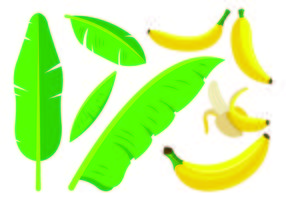 Set Of Plantain Icons
