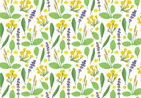 Free Herbs Plantain Pattern Vectors
