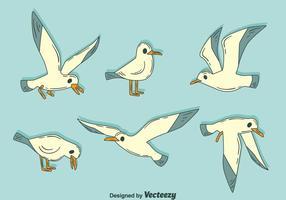 Hand getekende Albatross Vector