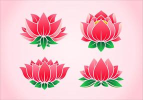 Vectores rosados de la flor de loto