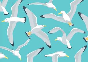 Albatross Illustration Background