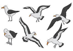 Ícones de vetor de albatroz