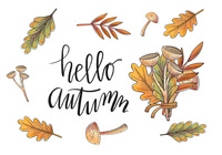 Watercolor Autumn Leaves And Branch Vectors