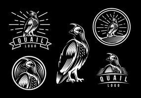 Modèle de logo de caille