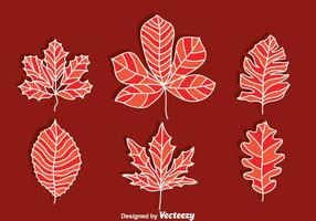 Handdragen Japansk Maple Vector