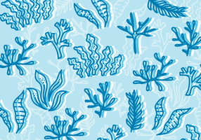 Sea Weed Illustration