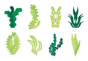 Free Seaweed Icons Vector