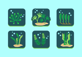 Sea Weed Free Vector Pack