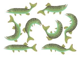 Muskie Fish Icons vector