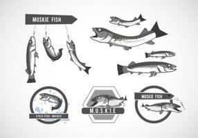 vetor de peixe de muskie