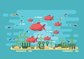 Groep Piranha Vectoren