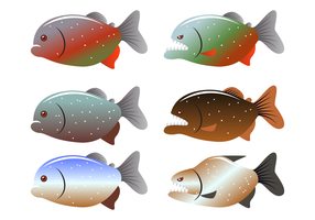 Farlig Piranha Fish Vector