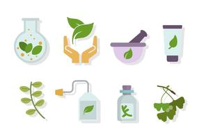 Vectores herbarios planos de la medicina