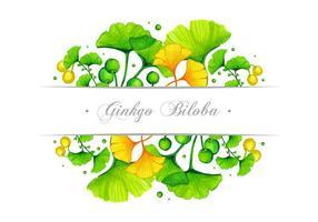 disegno vettoriale di ginkgo banner