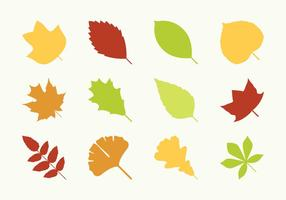 Flat Different Leaves Icons
