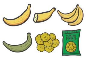 plantain vector set