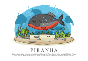 illustration vectorielle piranha