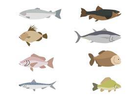 Vectores planos de los pescados