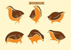 Set of vector Graphic Icons of Quail