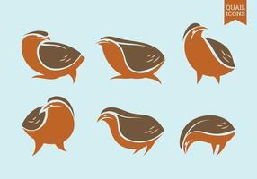 Set von Vektor-Grafik-Icons von Wachteln