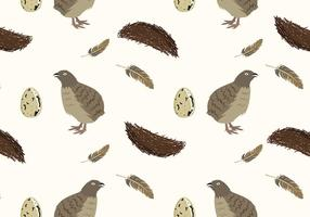 Quail Bird Pattern Free Vector