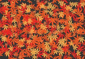 The Japanese Maple Seamless Pattern Vector