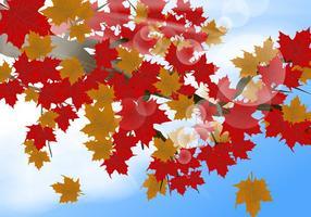 Fundo japonês Maple In The Morning