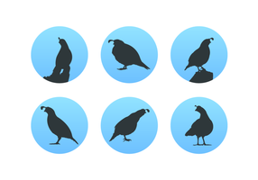 Quail Silhouettes Free Vector Pack