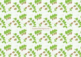 Jojoba Background