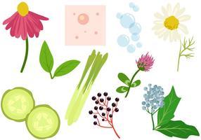Freie Pflanzen Akne-Behandlung