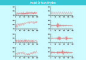 Model Of Heart Rhythm Vectors