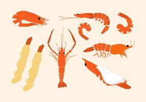 Vecteur de crevettes