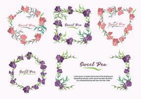 Colección de marco de flor de guisante de olor dulce ilustración vectorial