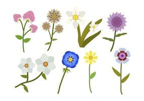 Vectores Flor Plano