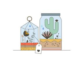 cactus terrarium vector