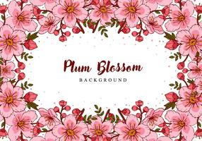 Plum Blossom Hand Draw Background vector