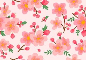 Beauty Pink Plum Blossom Seamless Pattern vector