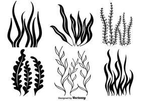 Iconos de la mala hierba del mar del vector