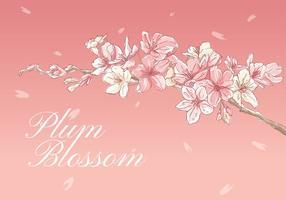 Fleur de prunier main dessin vecteur libre