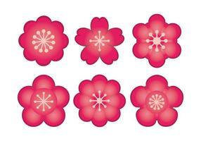 Plum flor conjunto de vectores
