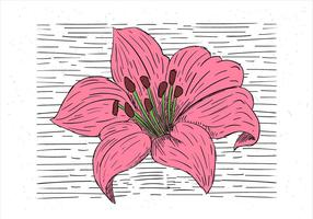fri hand dras vektor blomma illustration