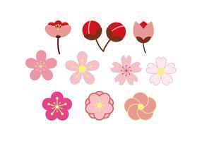 gratis blommar färgstark ikon vektor