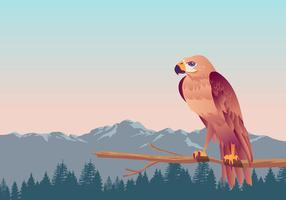 Buzzard Bird Vector