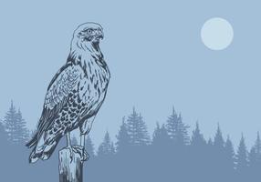 Buzzard i Forest Vector