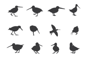 Snipe Silhouettes Vector